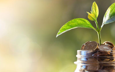 Qu'est-ce-qu'une fiscalité environnementale ?