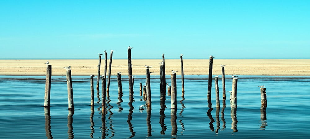 Géopolitique de l'eau : conflits ou coopérations ?