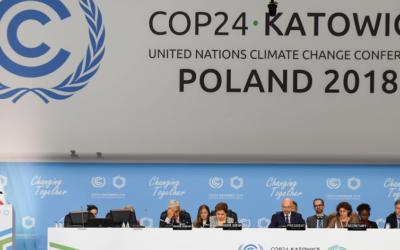 Climat : ce que disent les experts pour la Wallonie et la Belgique