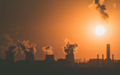 Cessons l'environnementalisme. Faisons de l'écologie !