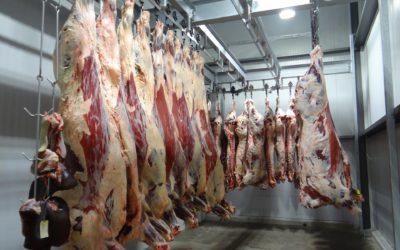 La viande in vitro: une solution sans animaux ni paysans