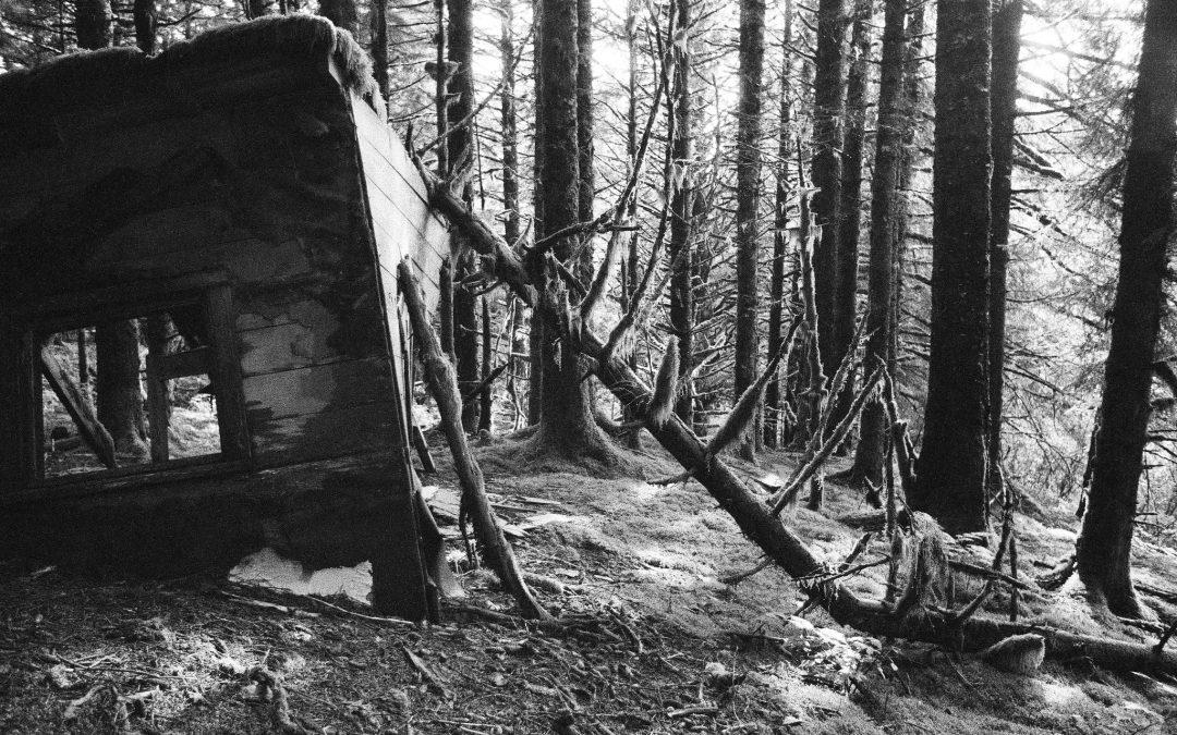 Entre sidération et déni des crises écologiques : et si les théories catastrophistes étaient mobilisatrices ?