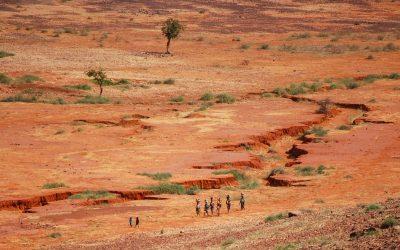 L'implication belge au Sahel, au carrefour de la sécurité et de la coopération